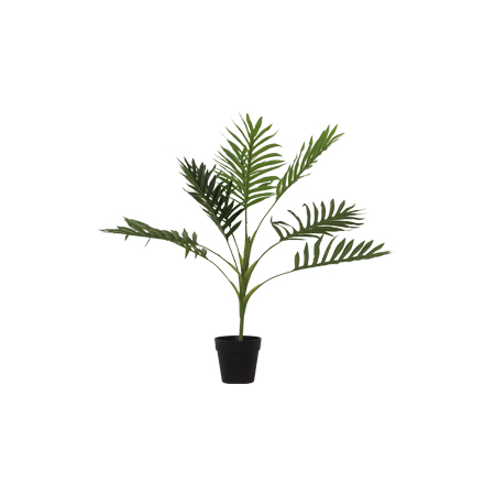 POTTED FERN 60CM