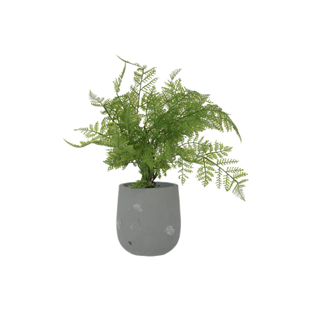 FERN POTTED PLANT 40CM